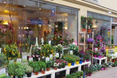 flowerpower Schönaugasse 5